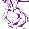 nudo-duomo-viola-3